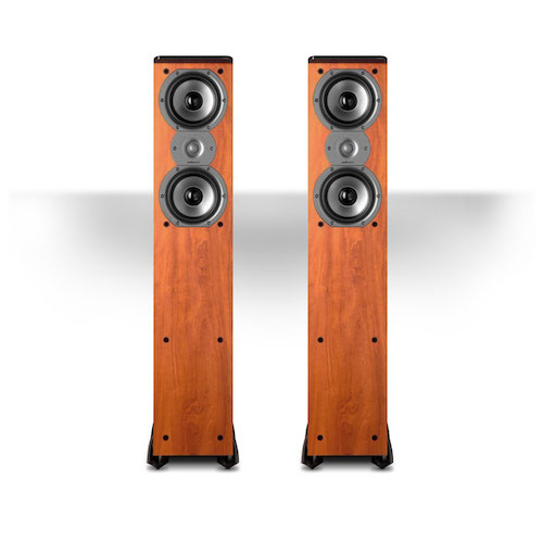 Polk Audio TSi300 3-Way Tower Speaker with Two 5-14 Drivers ? Best for House Parties